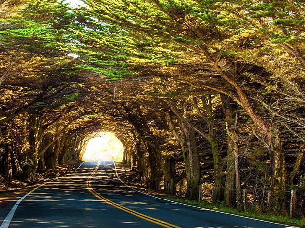 Mendocino Romantic Weekend Getaways in California