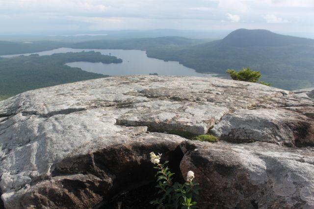 Trail Hiking in Maine Barren Mountain Appalachian Greenville