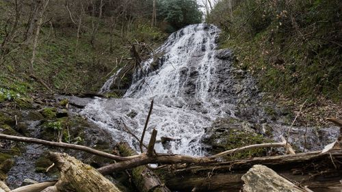 Best Buckeye Waterfalls Tennessee