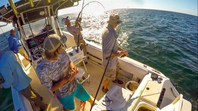 Best Things to do in Marco Island Charter for Fishing