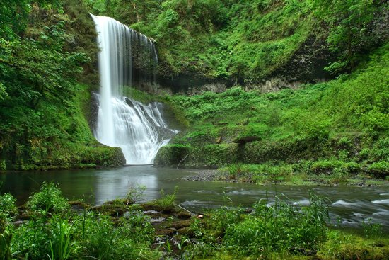 Camping Free Oregon Silver Falls Park for Overnight Camping