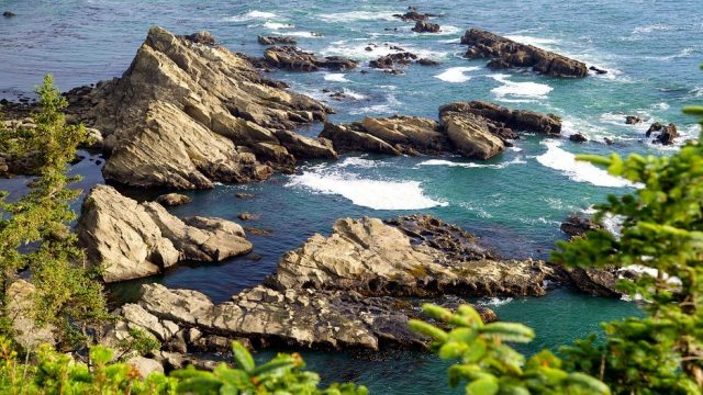 Cape Arago State Park, Coos Bay Beach Camping, Northwest OR