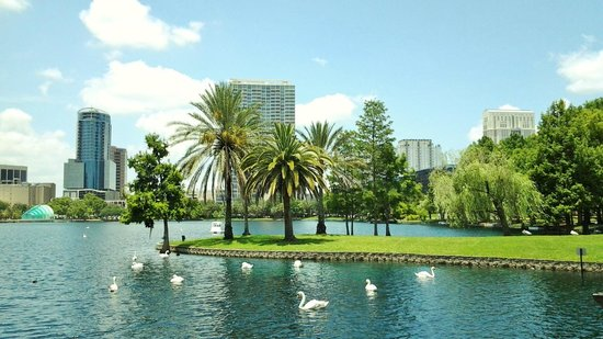 Lake Eola Park Best Places to Visit in Orlando