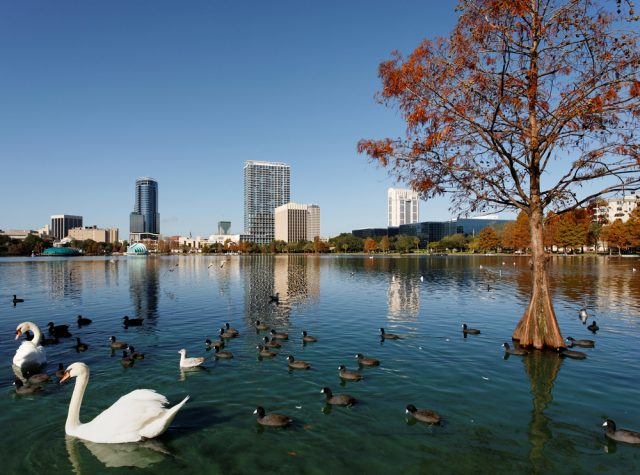 Lake Eola Park Things to See in Orlando