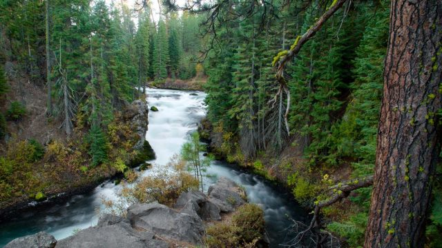 Oregon Deschuetes National Forest Free Camping, Bend