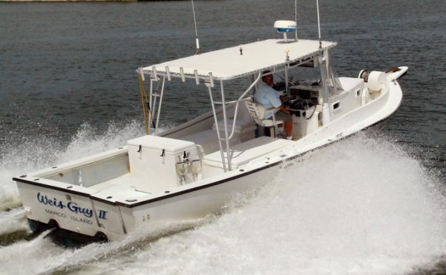 Things to do in Marco Island Wild Charter for Fishing
