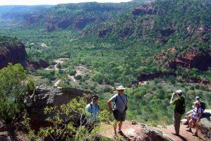 Austin Hiking Trails