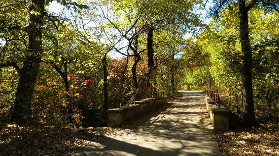 Austin Hiking Trails Arbor Hills Nature Preserve