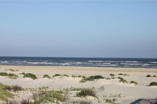 Galveston County West Beach in Houston TX