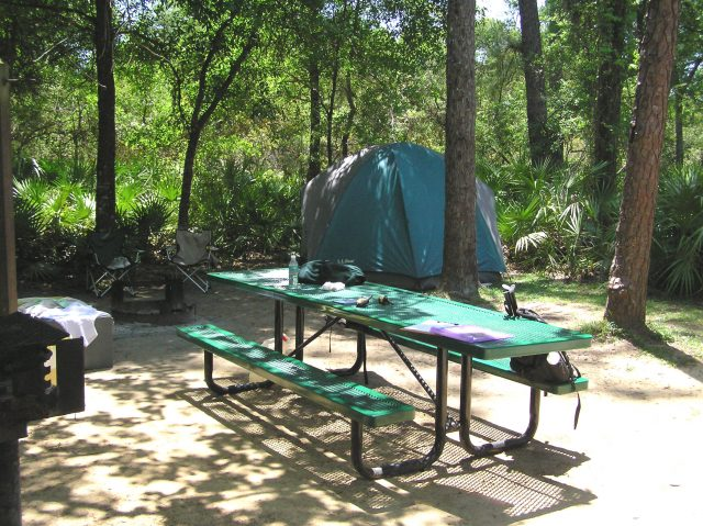 Ocala National Forest Free Florida Camping