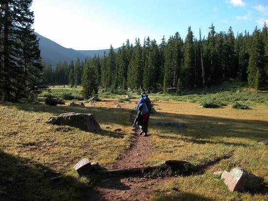 Utah Hiking Trails Henry's Fork King's Peak