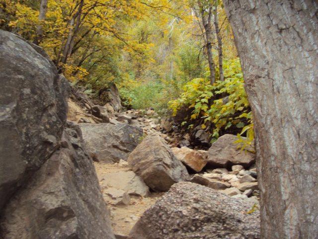 Utah Hiking Waterfall Trails Ogden Canyon