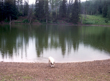 Dog Lake Utah