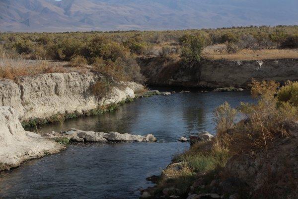 Best Bog Hot Spring in Nevada