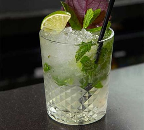 Mojito Popular Cuban Rum Drinks with Mint
