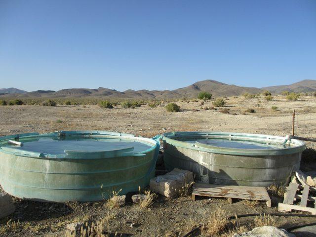Natural Kyle Hot Springs Nevada