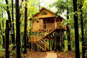Tree Houses in Arkansas