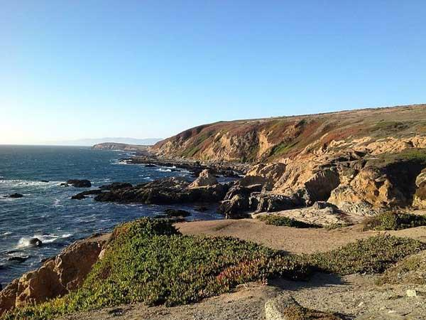 Bodega Bay Fun Weekend Trips Near San Francisco