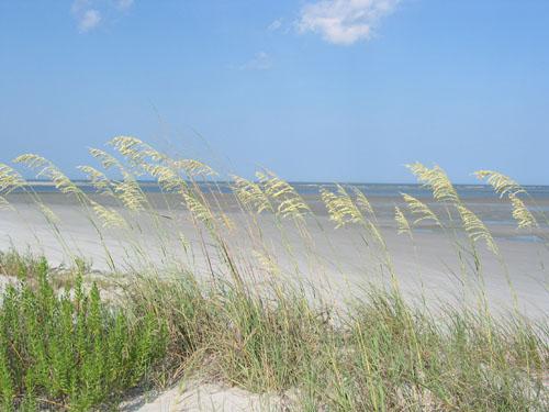 Georgia Cabretta Beach Sapelo Island GA