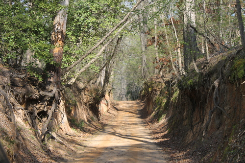 Stagecoach Road Haunted Places in East Texas