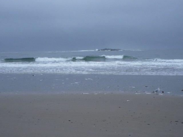 Ferry Beach Maine