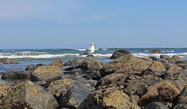 Long Sands Beach of Maine York