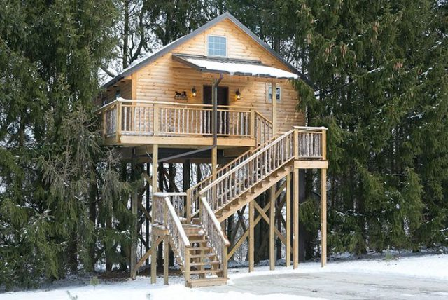 Lofty Willow Tree House in Berlin Ohio