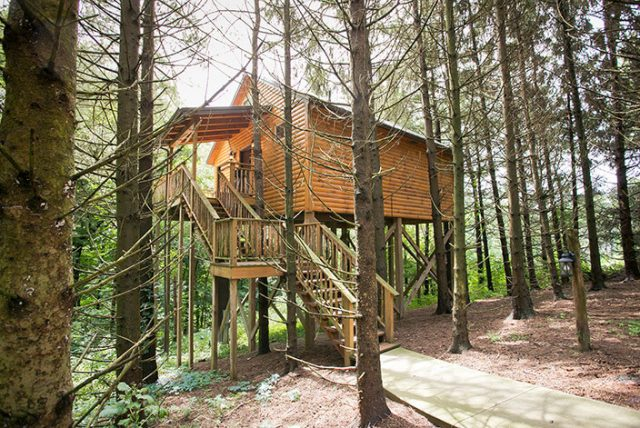 Whispering Pines Tree House Ohio