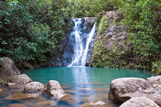 Laie Top Waterfalls Hikes in Oahu