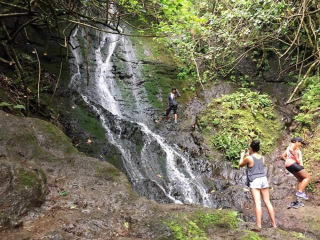 Likeke Falls Trailhead Top Waterfalls Hikes in Oahu