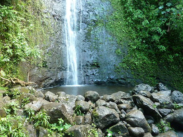 Manoa Waterfalls Hikes in Oahu