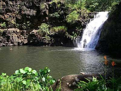 Waimea Best Waterfall Hikes in Oahu