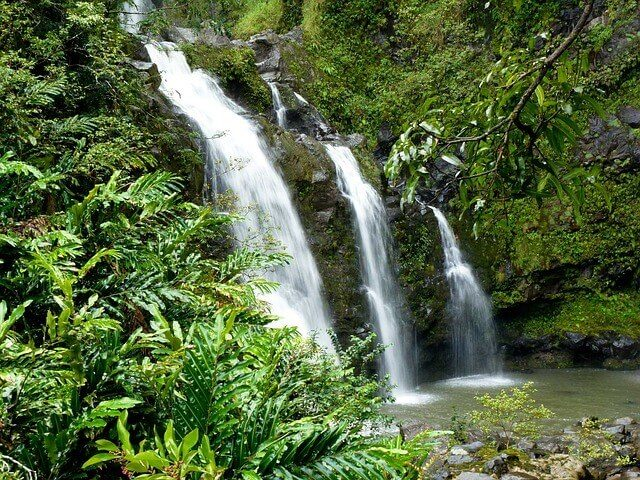 Waimea Waterfalls Hikes in Oahu