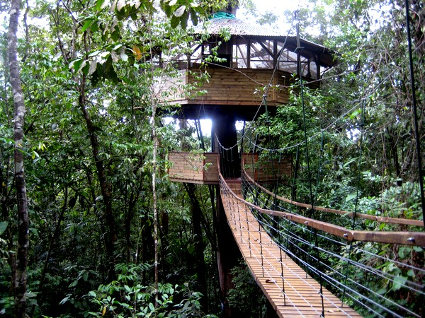 Costa Rica Tree House