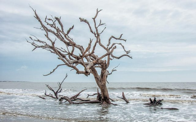 Jekyll Island Beaches Atlanta
