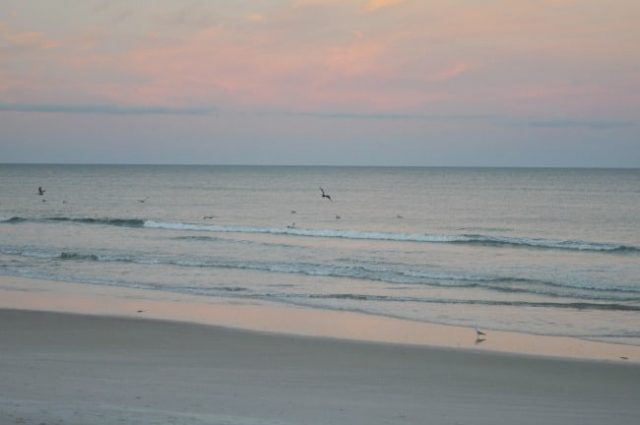 New Smyrna Beach Near to Atlanta