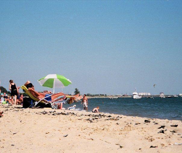 M Street Best Beaches in Boston