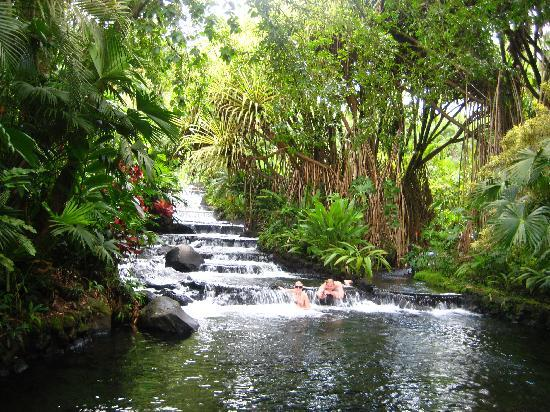 Tabacon Best Hot Springs In Costa Rica