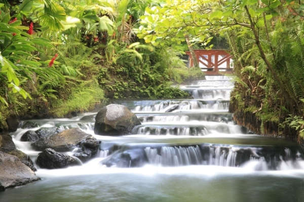 Tabacon Hot Springs Costa Rica