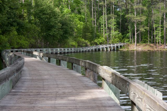 Cheraw State Park Campgrounds in South Carolina