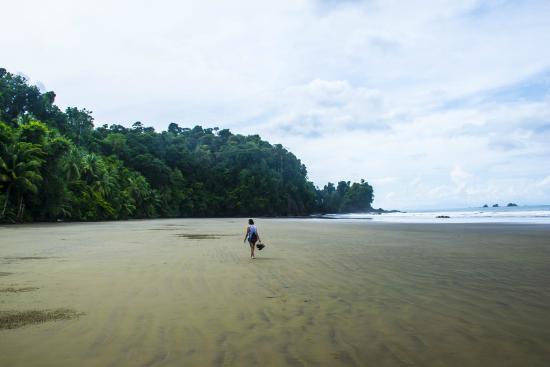 Playa Arcos Most Beautiful Beach in Costa Rica