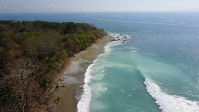 Playa Matapalo Best Beach in Costa Rica