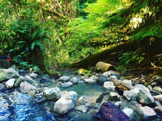 Best Natural Cougar Hot Springs in Oregon