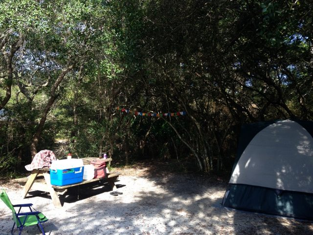 Grayton Beach State Park Campground in Florida