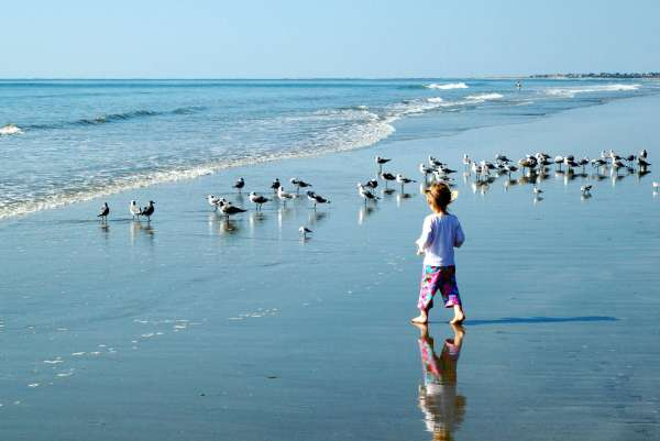 Kiawah Island Best Family Beach in South Carolina