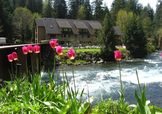 Natural Belknap Hot Springs in Oregon