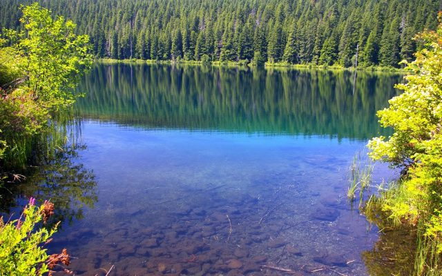 Best Clear Lakes in Oregon