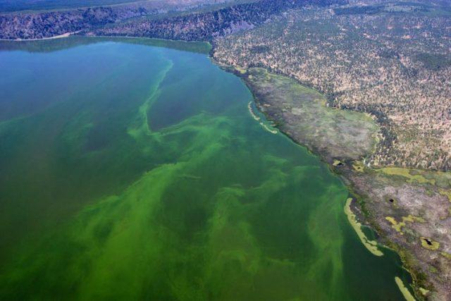 Best Upper Klamath Lakes in Oregon