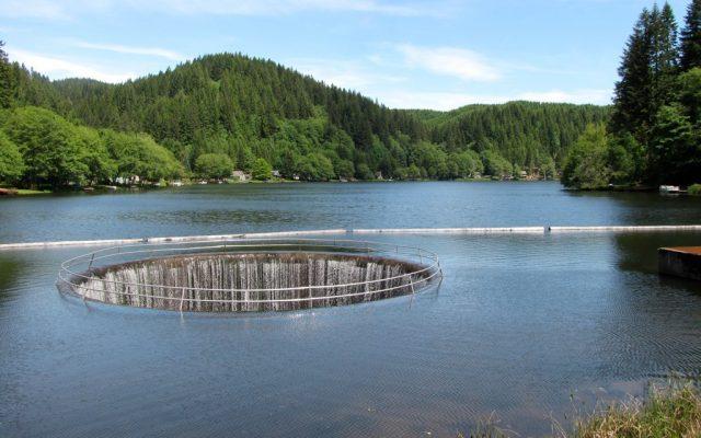 Fishhawk Lakes in Northern Oregon