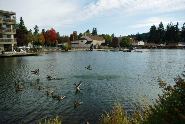Oswego Lakes in Oregon
